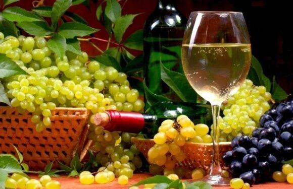Vinuri autohtone